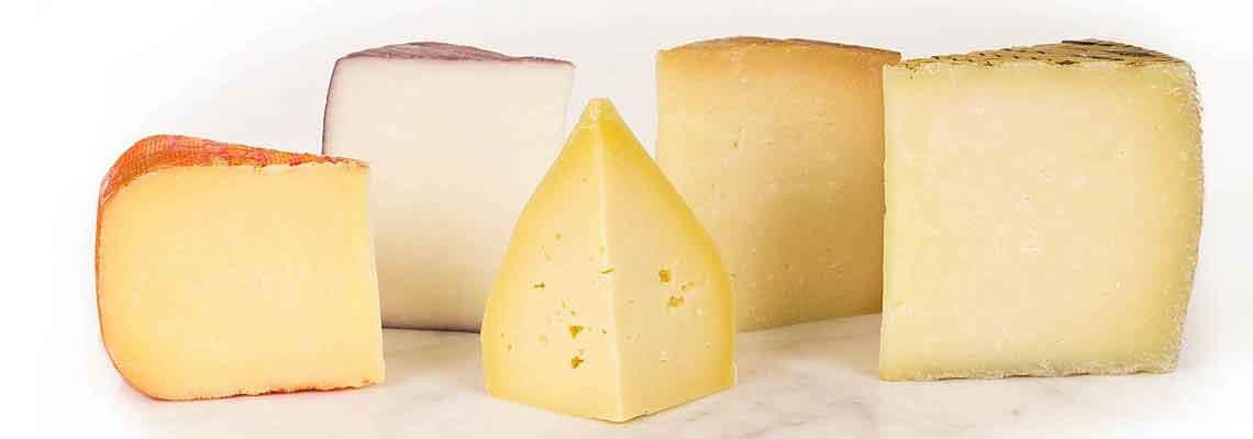 Širokou škálu sýrů