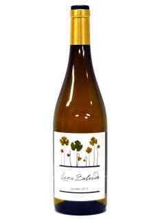 Bílé víno Luna Beberide Godello