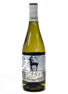 Bílé víno Shaya