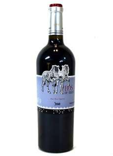 Červené víno Dos de Mayo