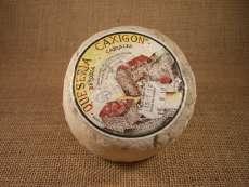 sýry Caxigon